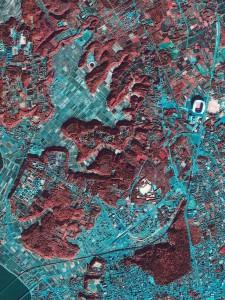 鹿嶋衛星画像